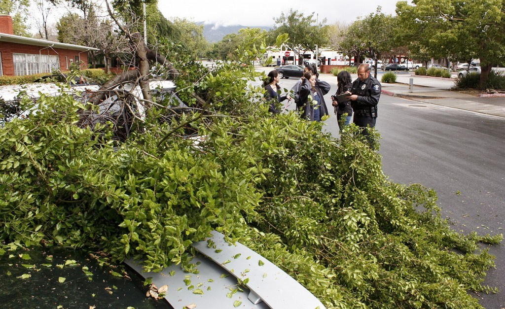 Rachel Gordon, Schelcy Nava and Chantal Crouzet file a police report with La Verne Police Department Officer Marty Weinreb after a large oak branch fell on Croutzel's Ford Explorer and another car outside the Stu-Han Residence Hall shortly before noon Monday. The owner of the second car, a Ford Mustang, was not present at the scene. / photo by Stephanie Arellanes