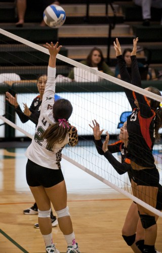 Freshman setter Krystal Castellanos managed to get the ball over the net in the first set, despite Occidental's attempts to block it. The Leopards fought hard against Occidental on Tuesday, but in the end were outdone by the Tigers and lost 3–1. / photo by Danielle Navarro