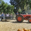 The annual La Verne Heritage Park Pumpkin Patch opened to the public Oct. 5. Heritage Park, including the Weber House, has been a civic historical center for 23 years. Located on Via De Mansion and Wheeler, the park offers a variety of activities for fall, including choosing pumpkins, taking tractor rides, visiting with farm animals and photo opportunities. / photo by Jasmin Miranda