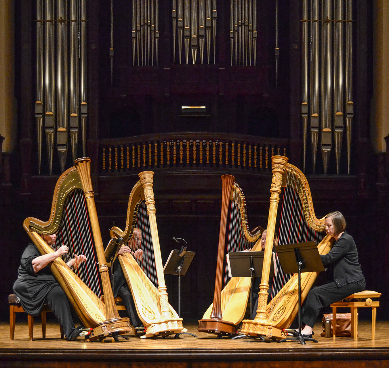 Musicians who harp together stay together | Campus Times