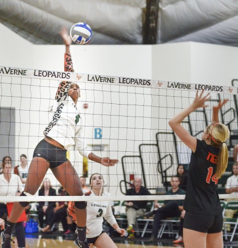 In the first set of the game, sophomore setter Natalie Barragan sets the ball for senior middle blocker Kelsi Robinson. Robinson scored while Occidental junior outside hitter Claire Strohm attempted to block. La Verne won 3-0, Oct. 21 at Frantz Athletic Court. / photo by Sarah Vander Zon