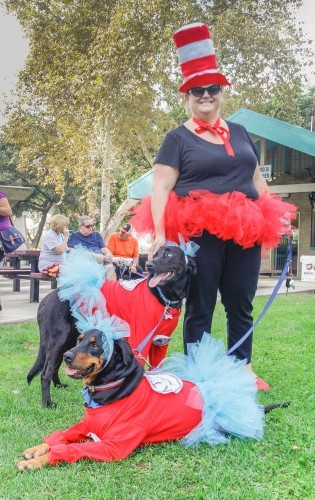 Maureen Davis and her two dogs, Lynn and Patty, dressed up as the Cat in the Hat and Thing 1 and Thing 2, winning the funniest pet costume at the Friends of Upland Animal Shelter costume parade and contest Saturday in Memorial Park in Upland. The event was created to encourage pet adoptions, and to raise money for the shelter. / photo by Annette Paulson
