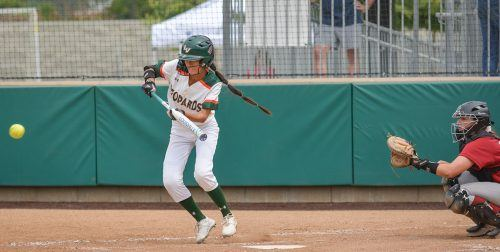 La Verne outfielder Rachel Ogata lays down a bunt in the bottom of the fifth inning Friday, only to be thrown out by Chapman catcher Analisa Ruff. The Leopards defeated the Panthers, 5-0, in the opening game of the SCIAC Postseason Tournament. They advanced to the Championship game where they beat Claremont-Mudd-Scripps, 4-3 and qualified for the NCAA Tournament in Tyler, Texas. / photo by Conor Holahan