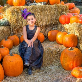 Avery Perez, 7, went on Tuesday to the annual Heritage Harvest Pumpkin Patch in Heritage Park at 5001 Vía De Mansion in La Verne, where people can buy pumpkins, stop by the petting zoo or take a hay ride. The event is open through Oct. 30.