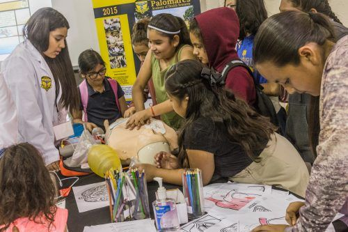 A student from Palomares Academy for Health Sciences booth shows children how to perform CPR on an dummy. The STEAM Fair is in partnership with Cal Poly Pomona in order to get kids interested in science, technology, engineering, arts and math. / photo by Mya-Lin Lewis