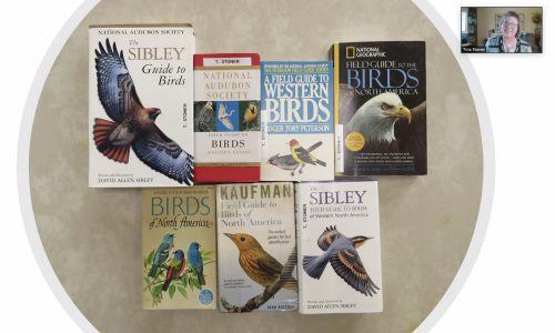 Tina Stoner, president of the Pomona Valley Audubon Society, recommends some introductory guides to birding and gives basics on how to start out in bird watching on Saturday at the California Botanic Garden's Introduction to Birding class held via Zoom. / screenshot by Melody Blazauskas