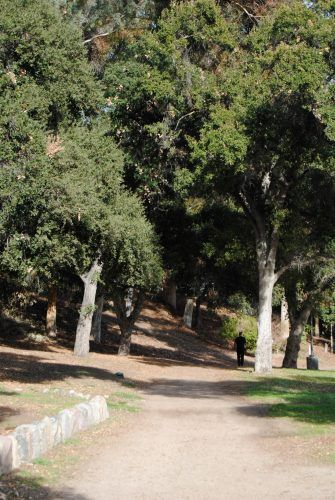 A man walks along one of the many hiking trails in San Dimas Canyon Park on Sycamore Canyon Road in San Dimas. In addition to hiking trails, the park also offers playgrounds, picnic areas and open fields. / photo by Maddie Ybarra