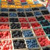 The Claremont Farmers and Artisans Market offers a wide array of produce, including many varieties of berries. The market is open from 8 a.m. to 1 p.m. every Sunday in the Claremont Village on Harvard Avenue, between First Street and Bonita Avenue. / photo by Kaitlin Handler